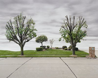 """digitally manipulated color image; view across a paved street with bricked mailbox with address """"2052"""" at right next to driveway; two severely trimmed boulevard trees; two small areas of landscaping with small shrubs and two small trees; grey sky with striated clouds"""