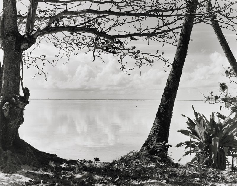 trees left foreground and right center foreground frame view of sea with distant waves breaking, a boat and a cloudbank
