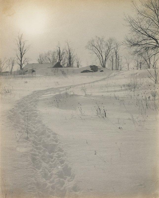 barren snowscape