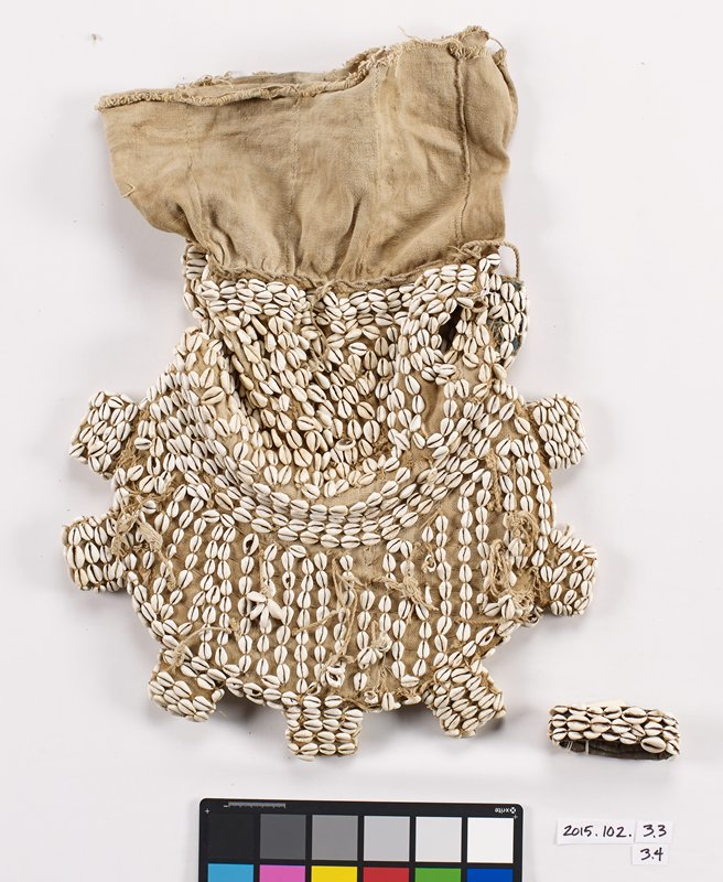 cowrie shell covered bracelet; three rows of shells attached to a thick brown fabric roll; part of tribal ceremonial costume