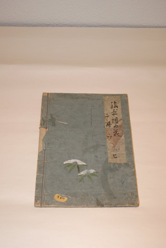 bound book with light blue cover; white cranes and mushroom like figures on front cover; two white flowers on back; contains black and white images of people engaged in various activities with narration
