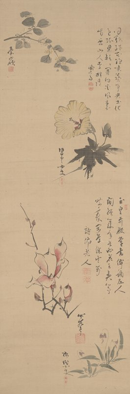 four different illustrations of flowers with seals and inscriptions: ULQ, small sprig with leaves and tiny yellow and white buds; yellow hollyhock at URQ; magnolia branch LLQ; violets LRC