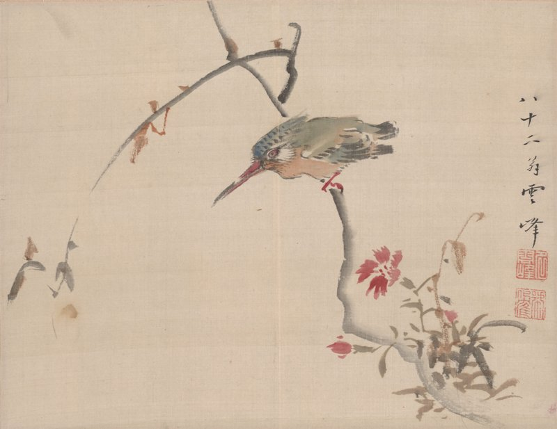 small colorful bird with long, magenta beak; green, brown, white, and blue plumage; bird is perched near the top of a branch; cluster of green, brown, and grey foliage LRC with vibrant magenta blossoms; brown buds near top of branch; inscription with two square seals at R edge