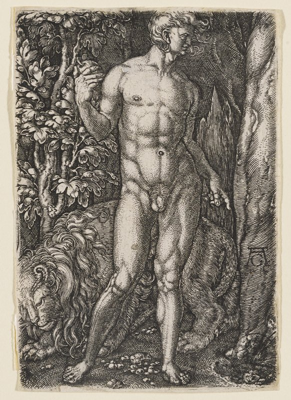 nude Adam in contrapposto stance next to tree, holding a fruit still attached to the tree; a lion rests behind Adam on the ground
