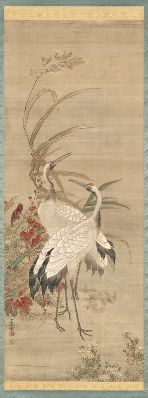 two white cranes standing in front of a clump of colorful foliage, including red leaves, white mums, and tall, brown reeds; crane chick at lower center