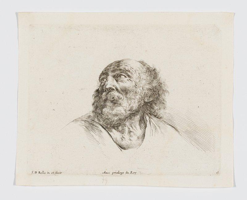 head of an old man with bushy white beard, looking up toward PR