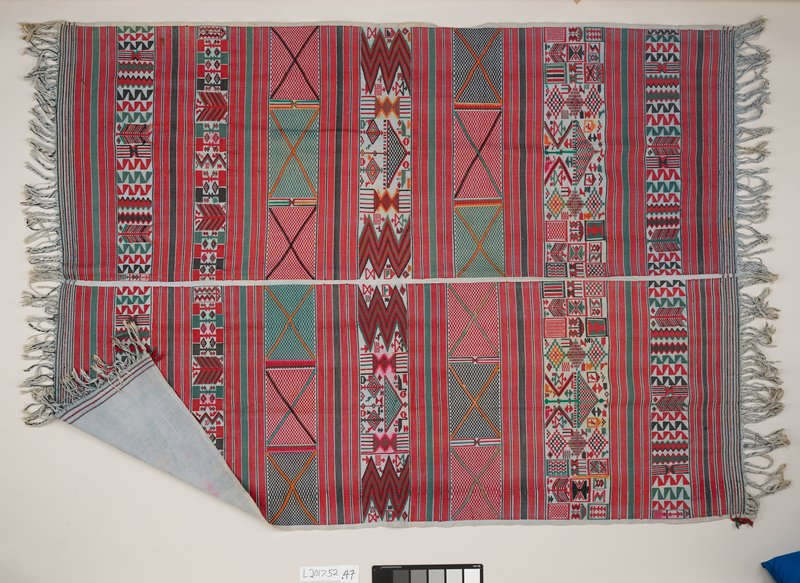 panel with two sections joined in middle; woven lines of green, red, and black alternate sections with geometric designs; fringed tassels on both ends; gray background