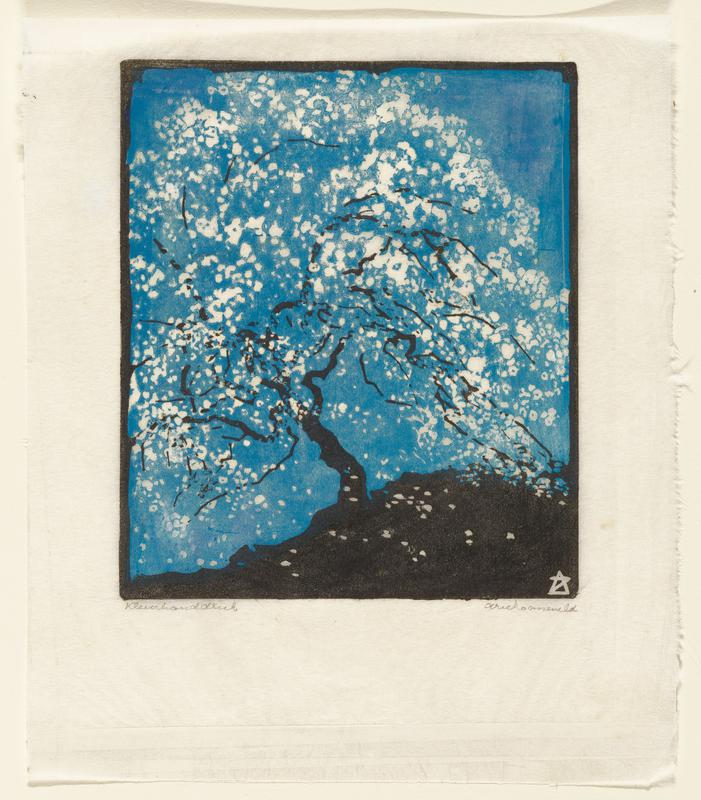 black tree trunk with white blossoms agains a dark blue sky; black border