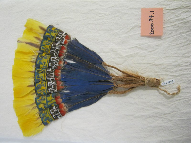 small fan formed with feathers with quills attached to braided fiber strands tied together; blue feathers with cut feather fragments in orange, white, brown, yellow and blue forming geometric patterns below yellow tips; mounted inside plexi case
