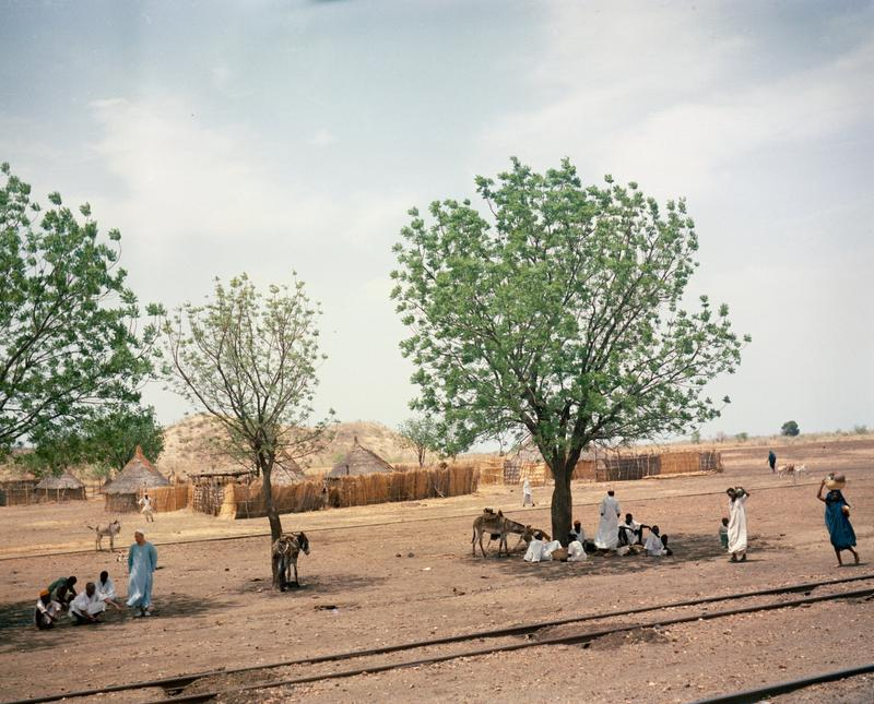 Color photograph of train tracks in the foreground with people under trees in the middle ground and a fenced in area and low hills in the background