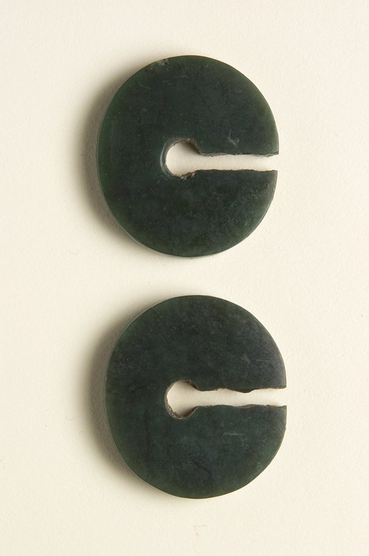 2 oval-shaped discs with flat sides; slightly wider at bottom; dark green with black streaks