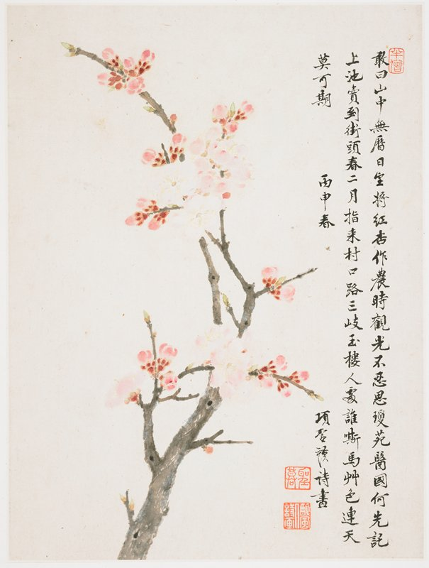 pink blossoms and small flowers on a grey branch; inscription and 3 seals at right