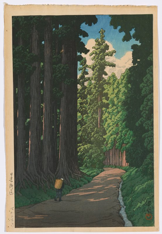 landscape; man walking on path flanked by tall trees
