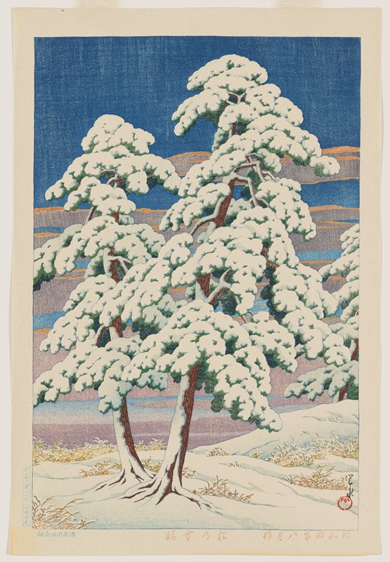 two snow-covered pine trees